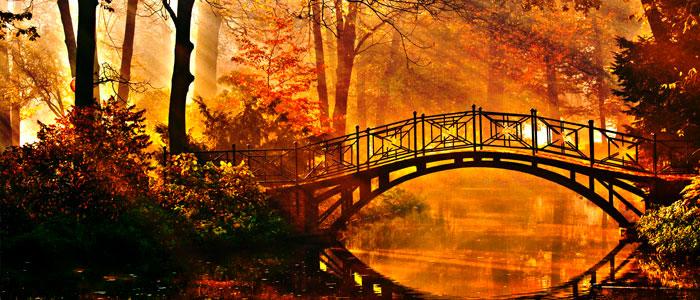 Herbstgenüsse