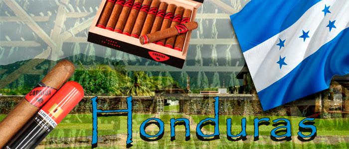 Honduranische Zigarren
