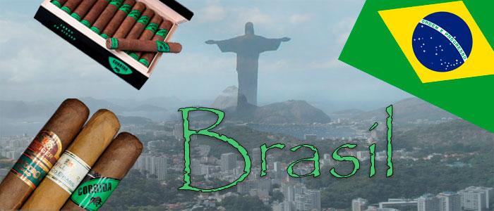Brasilianische Zigarren