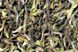 Darjeeling Finest  SFTGFOP1 Nagri Farm First Flush